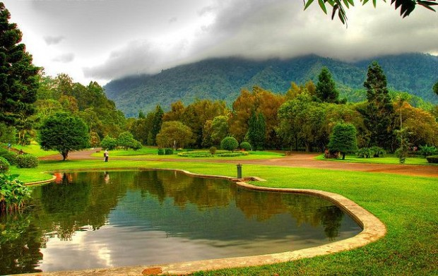 Tempat-wisata-di-Cianjur-Kebun-Raya-Cibodas