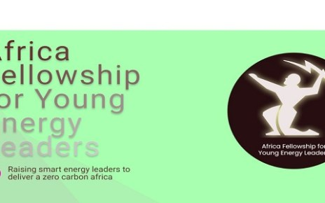 Africa Fellowship for Young Energy Leaders