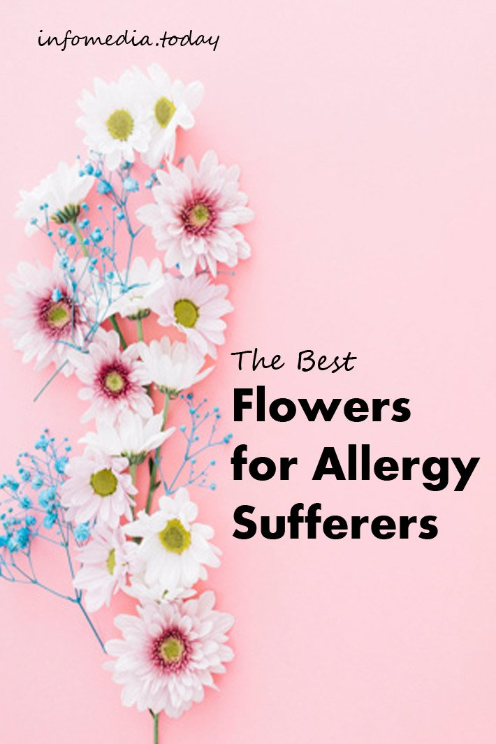 The Best Flowers for Allergy Sufferers