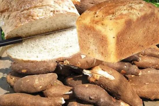 Cassava-bread-fund-nigeria