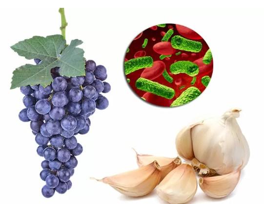 El ajo y la uva, dos guerreros naturales contra los parásitos
