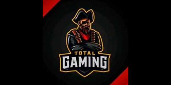 Total Gaming (Ajju Bahi) Net Worth