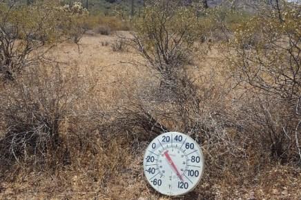 Rescatan a dos migrantes deshidratados cerca de Tubac