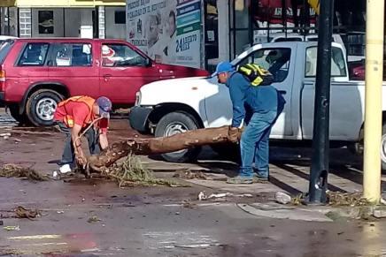Continúan lluvias causando estragos en Nogales