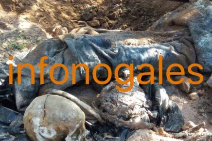 Localiza Ejército y PF «narcofosa» en las afueras de Nogales