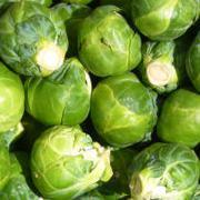 Hoe Gezond Vermageren tips, groenten spruiten. Snel vermageren - Wandelen om te vermageren.