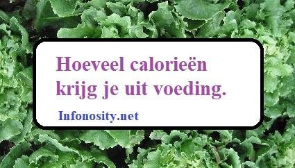 Hoeveel calorieën krijg je uit voeding. Infonosity.net