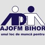 AJOFM Bihor: 250 de lei pentru absolventii de studii superioare care nu si-au gasit de lucru