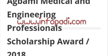 Agbami Scholarship Application