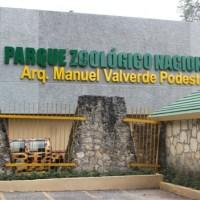 Desconocidos lanzan feto frente a puerta del Parque Zoológico Nacional
