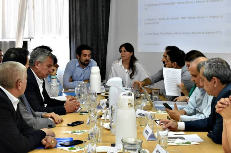 Comité Ejecutivo Federal de Responsabilidad Fiscal 2020