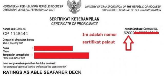Cek nomor sertifikat pelaut
