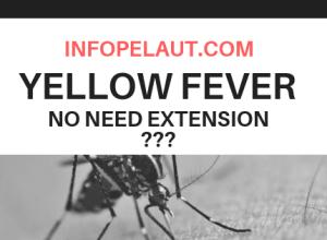 Tidak perlu memperpanjang Yellow fever