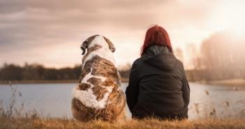 Zooterapie aneb jak pes ovlivňuje zdraví člověka