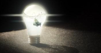 Proč volit do akvária LED osvětlení místo zářivkového