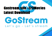 gostream.site review