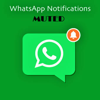 Mute WhatsApp Notifications on Android and Iphone iOS