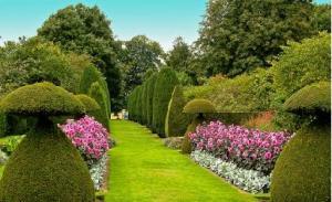 Teoria do Jardim