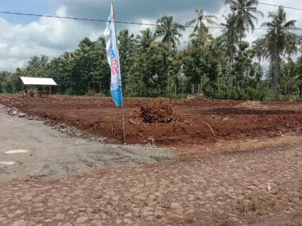 tanah kavling murah pesawaran