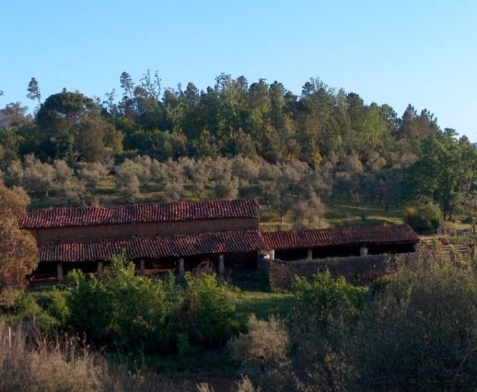 sierra de gata, molino, santibañez el alto, paloma, turismo, raya, raia, portugal, turismo rural.