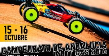 15 y 16 de Octubre - Gran Premio Modelix, Campeonato de Andalucía 1/8 TT Gas en Lebrija