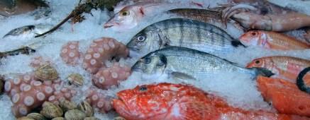 Mercado pescadería