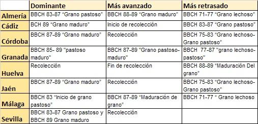 Estados fenologicos de los cereales sem 23-2020