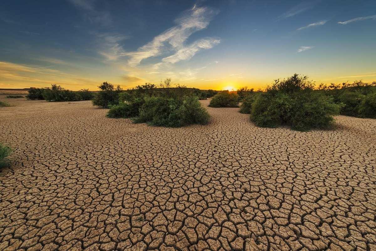 la sequía amenaza suelo árido