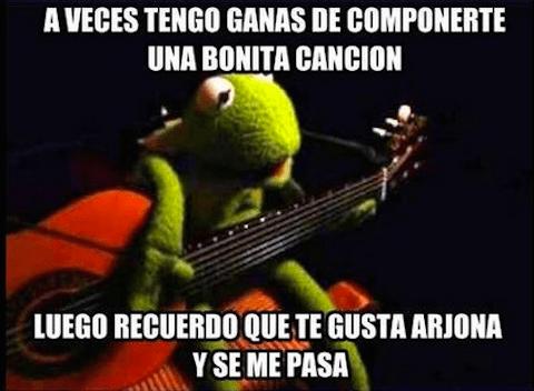 Los-memes-de-la-rana-Ren--6