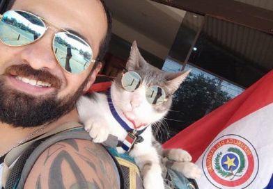 Triste despedida: El gato mochilero muere envenenado en Paraguay