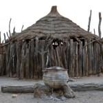 Mentally ill woman raped in Oshana