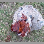 Man bludgeoned to death with a rock