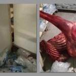 NWR clears staff on giraffe carcass saga