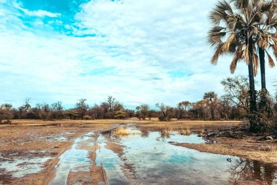 Heavy rains may lead to flash floods