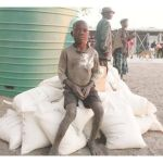Food insecure people in Southern Africa to peak to 12.5 million