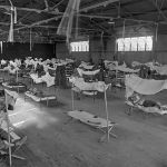 NAMIBIAN FLU-HORROR FROM THE PAST