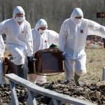 COVID death toll passes the 250 mark