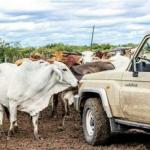 Farmers on the road to recovery