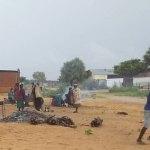 Angola's humanitarian drama exposed