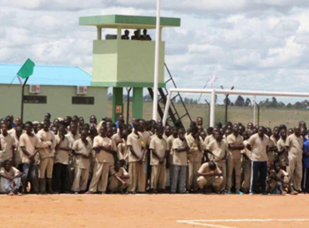 Namibians imprisoned Angola Namibian citizens Angola authorities