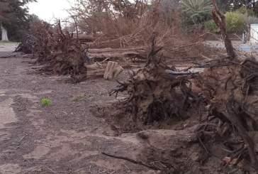 Strong wind cause havoc in Oranjemund
