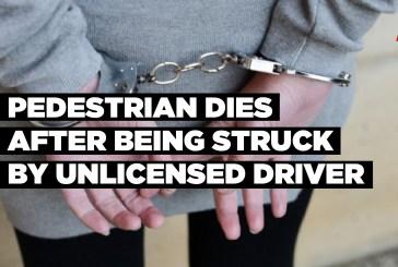 Pedestrian dies after being struck by unlicensed driver