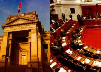 Poder Judicial admite a trámite amparo de ONG IDL para suspender elección del TC