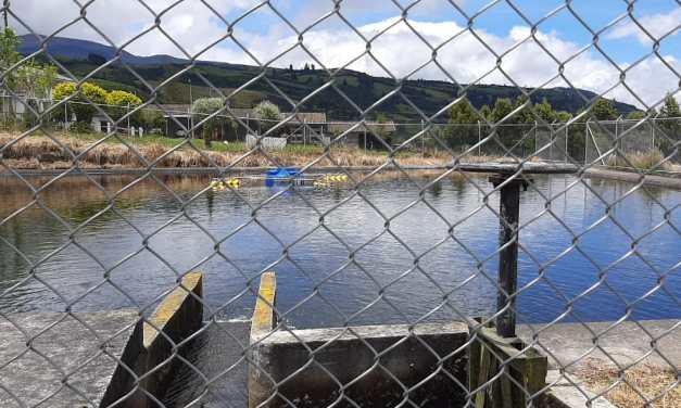 Productores de Tungurahua reciben sistemas de  riego parcelario, créditos, y títulos de tierras