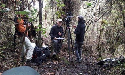 el Documental sobre el oso andino, fue ganador a la mejor película de especies en peligro