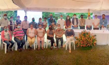 Ecuador fortalece la producción sostenible de palma aceitera en la Amazonía