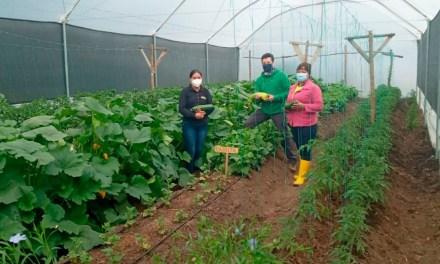 El Proyecto regional Aicca realiza acciones para enfrentar el cambio climático