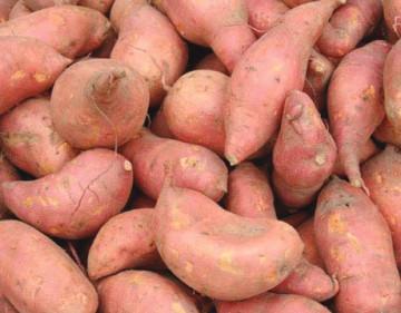 sweet-potatoes-360x281