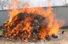 Incinera PGR  kilogramos de narcóticos y objetos de delito