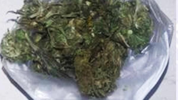 Asegurados con marihuana